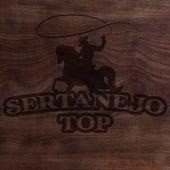 Sertanejo Top de Various Artists