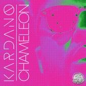 Chameleon by Kardano
