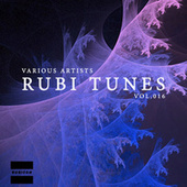 Rubi Tunes, Vol. 016 by Various Artists