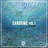 Cardume Vol.1 by Various Artists