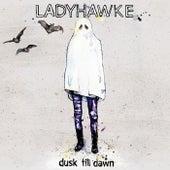 Dusk Till Dawn by Ladyhawke
