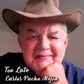 Too Late fra Carlos Pacho Mejia