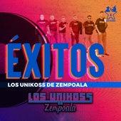 Éxitos los Unikoss de Zempoala de Los Unikoss De Zempoala