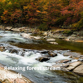 Relaxing Forest Stream Sounds von Relax