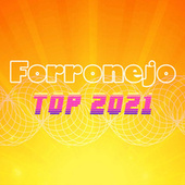 Forronejo Top 2021 by Various Artists