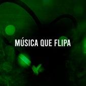 Música que Flipa de Various Artists
