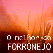 O Melhor do Forronejo by Various Artists
