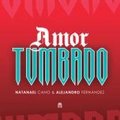 Amor Tumbado by Natanael Cano