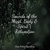 Sounds of the Mind, Body & Spirit   Relaxation by Calming Sounds