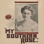 My Southern Rose by Judy Collins