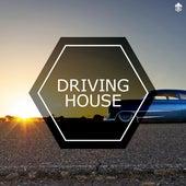 Driving House de Various Artists