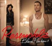 Blaue Flecken von Rosenstolz