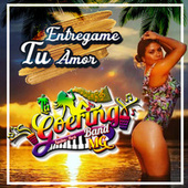 Entregame Tu Amor by La Goering Band MG