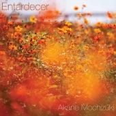 Entardecer by Akane Mochizuki