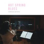 Hot Spring Blues fra Bessie Smith, Bessie Smith and Her Band, Bessie Smith and Her Blue Boys