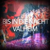 Bis in die Nacht - Valheim von Execute
