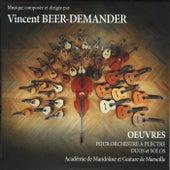 Oeuvres de Vincent Beer-Demander