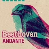Beethoven Andante de Various Artists