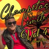 Champetas Sin Limite, Vol. 4 de Varios Artistas