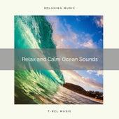 2021: Relax and Calm Ocean Sounds de Ocean Sounds Collection (1)