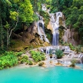 Forest Waterfall de Sounds Of Nature