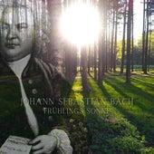 Spring Sun (432 HZ) by Johann Sebastian Bach