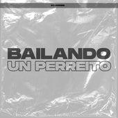 Bailando un Perreito by DJ Cossio