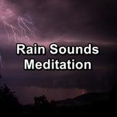 Rain Sounds Meditation by Nature Sounds Artists