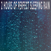 2 Hours of Perfect Sleeping Rain by Color Noise Therapy