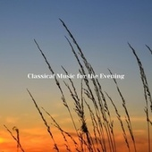 Classical Music for the Evening fra Various Artists