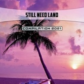 Still Need Land Compilation 2021 de Borrelli