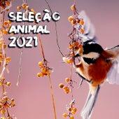 Seleção Animal 2021 de Lualdi John Toso