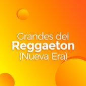 Grandes del Reggaeton (Nueva Era) de Various Artists