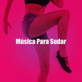 Música Para Sudar de Various Artists