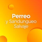 Perreo y Sandungueo Salvaje de Various Artists