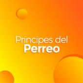 Príncipes del Perreo de Various Artists