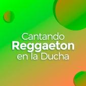 Cantando Reggaeton en la Ducha by Various Artists