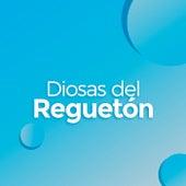 Diosas Del Reguetón de Various Artists