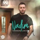 Shahrzad Ghese by Nadim