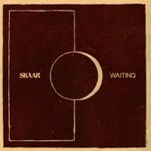 Waiting by Skaar