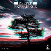Deeper Experience, Vol. 29 de Various Artists