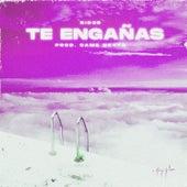 Te Engañas by Rid3r
