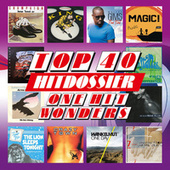 TOP 40 HITDOSSIER - One Hit Wonders (Eendagsvliegen Top 100) de Various Artists