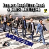 Move On by Farmersroad Blues Band