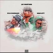 Hellcat (feat. Rylo Rodriguez & MGM Lett) by Jay.Montana