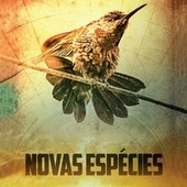 Novas Espécies (Trilha Sonora Original) de Alexandre Guerra