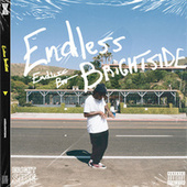 Endless Brightside by Amir Says Nothing