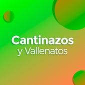 Cantinazos y Vallenatos by Various Artists