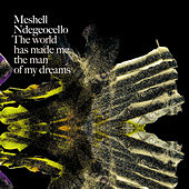 The World Has Made Me The Man Of My Dreams von Meshell Ndegeocello