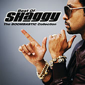 The Boombastic Collection - Best Of Shaggy (International Version) de Shaggy